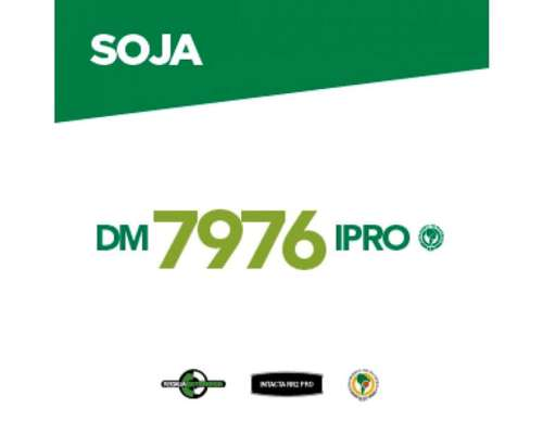 Dm 7976 Ipro RSF