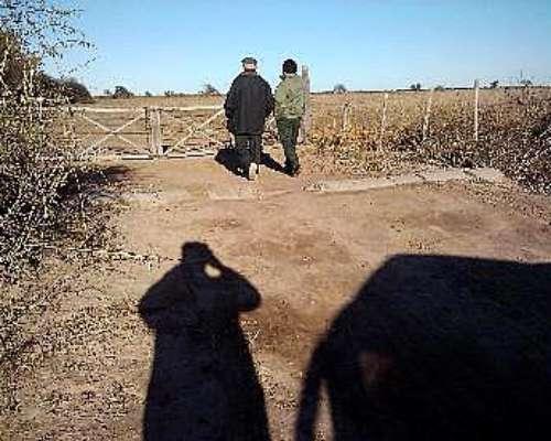 Vendo Campo para Alfalfa