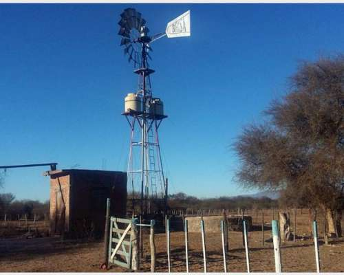 Campo de Cría en Quines - San Luis