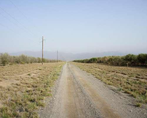 Dos Campos Sobre Ruta. USO Mixto. Catamarca