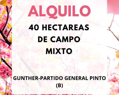 Alquilo Campo en Gunther-general Pinto- BS AS
