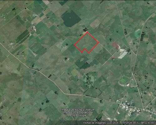 Campo Agricola con Aptitud Avicultura y Feedlots en Ranchos