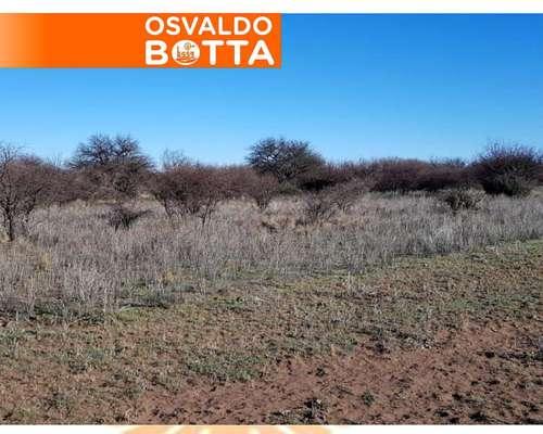 3063 Has. en Victorica, la Pampa