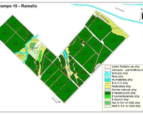 703,77 – Has Ramallo Buenos Aires