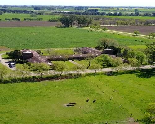 Estancia en SA Areco. 300 Has. a 1 km de Rn8. Ideal Haras