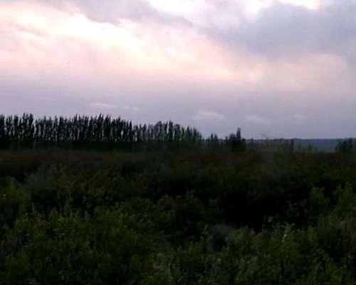 Campo en Agrelo, Luján de Cuyo, Mendoza