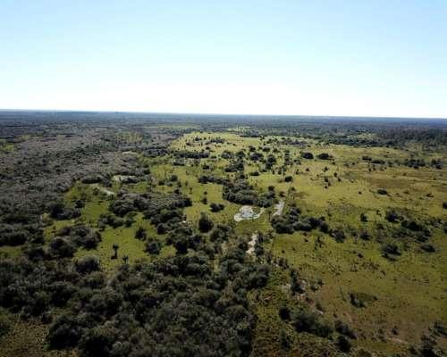 3700 Has. Campo Ganadero en Corrientes