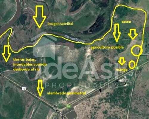 Campo en Venta en Gualeguay, Entre Rios