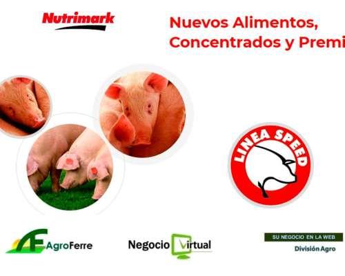 Alimentos y Concentrados para Cerdos
