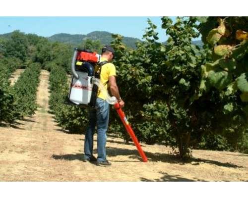 Aspirador para Frutas Secas V77s Cifarelli