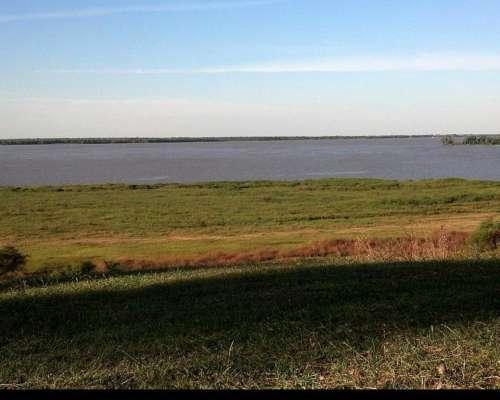 15 Ha Sobre Río Paraná Arroyo Seco