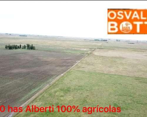 1000 Hectareas Agricolas en Alberti
