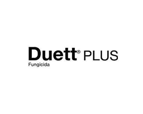 Duett Plus