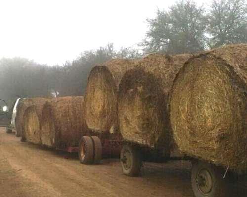 Rollos Pasto Natural con Segadora. Puestos S/camión
