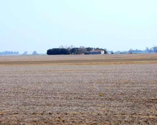 Sf0194 Campo Agricola 188 Has, Entre Pergamino y Rosario