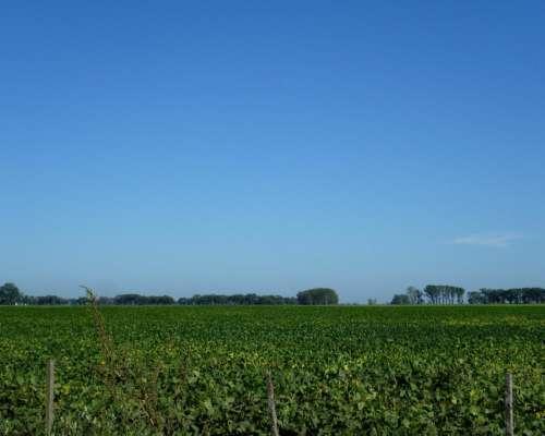 3700 Hectareas Agricolas Quimili