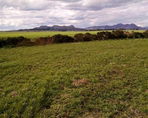 Parcela Zona Sierra De La Ventana