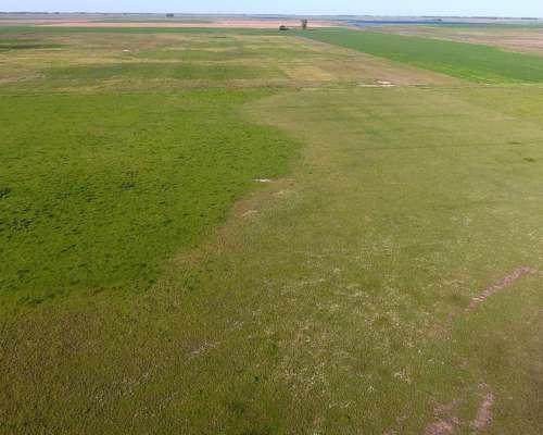 Campo Mixto Zona de Lincoln