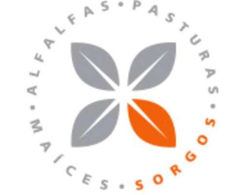 Semillas De Forratec, Maices, Sorgos Y Alafalfas