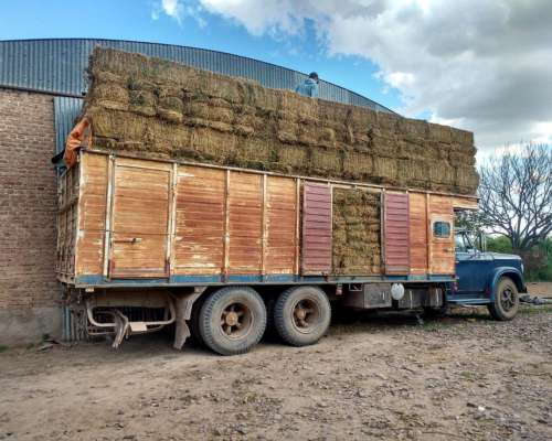 85fardos de Alfalfa en Venta