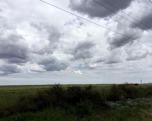 Campo Cercano a Bahía Blanca 248has