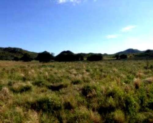 Vendo Espectacular Campo Mixto a Tranquera Cerrada