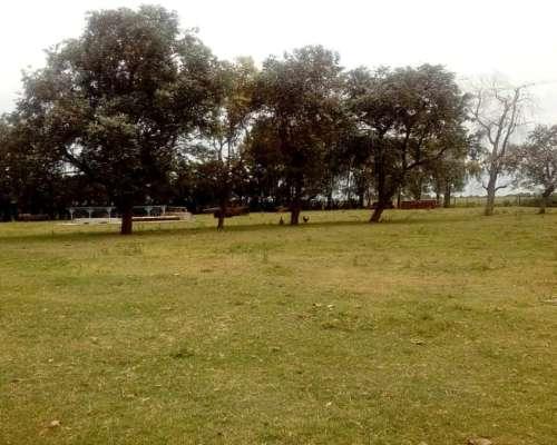 100has de Campo a la Venta en Zona de General Deheza, Córdob