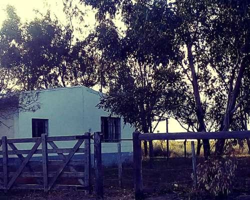 Campo San Rafael Mendoza