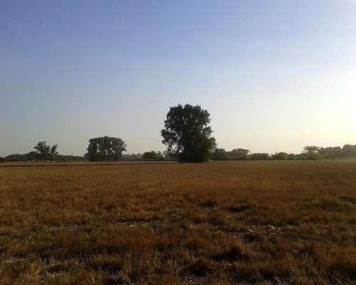 14 Ha Cultivo Agrícola,marcos PAZ