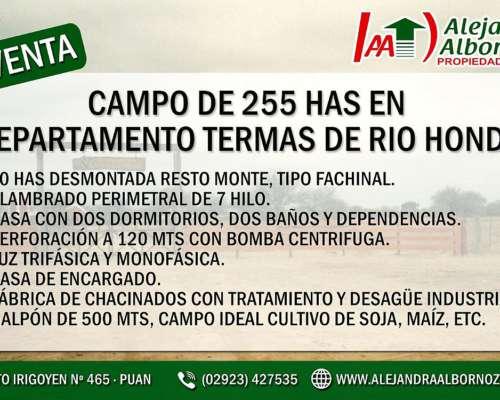 Alejandra Albornoz Vende en Termas de Rio Hondo