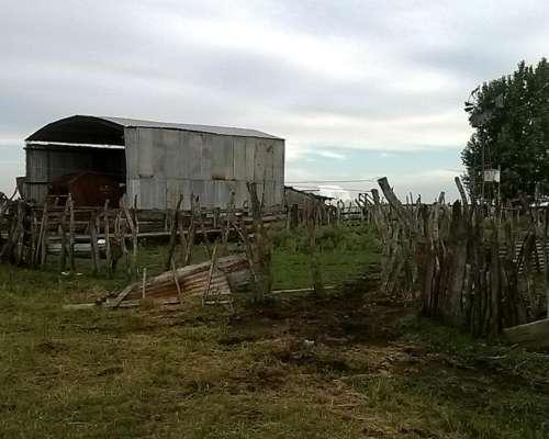 Vendo Excelente Campo Agrícola Ganadero