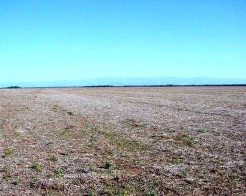Venta de Campo Agricola 8000 Has Anta, Salta