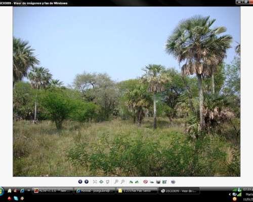 Formosa. Colonia Pastoril, 1000 Has, Ganadero para Cargarlo