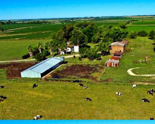 Vendo.excelente Campo Agrícola Sobre Asfalto Dpto. Parana ER