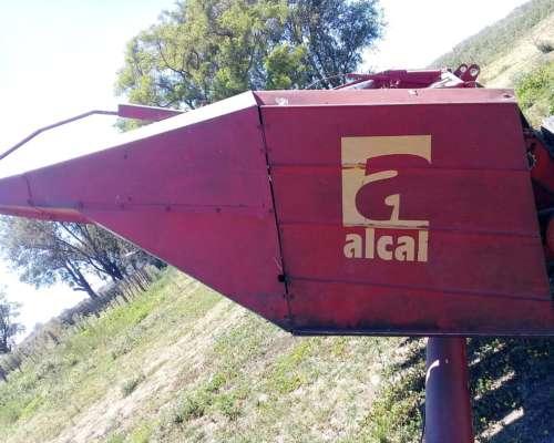 Girasolero Alcal de 10 a 70