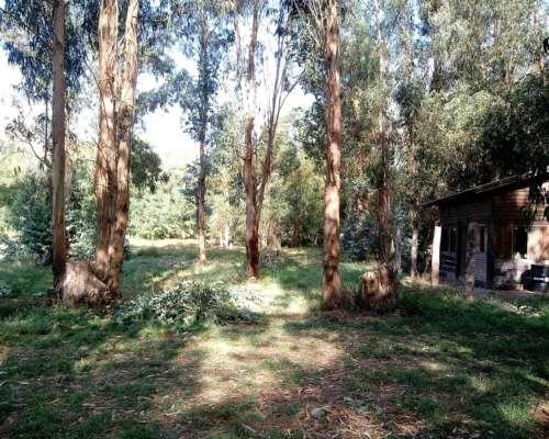 Chacra Tandil, Urbana, 2.3 Has, Cabañas, Arroyo, Arbolado