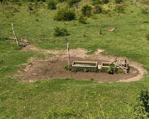 172 Has. Agrícolas - Ganaderas en Rincón del Gato - Gchú
