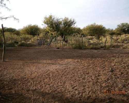 Agropatagonia Vende 4000ha en Carmenza