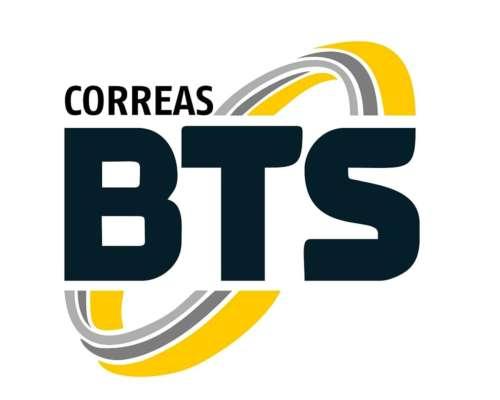Correas Planas sin Fin para Desmalezadora 5 X 8800