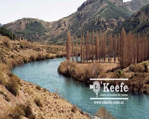 Campo Exclusivo Sobre el Rio Limay. Ideal Pescadores