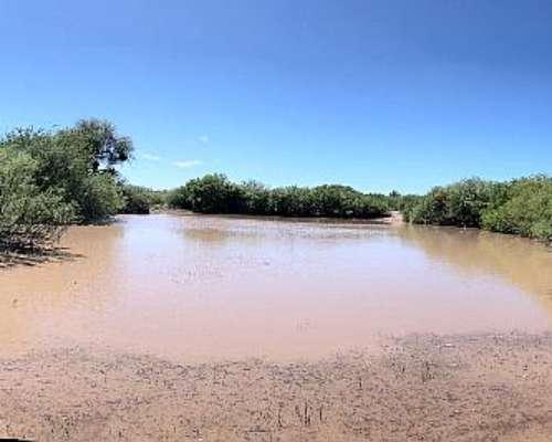 Campo de 8400has en la PAZ Mendoza