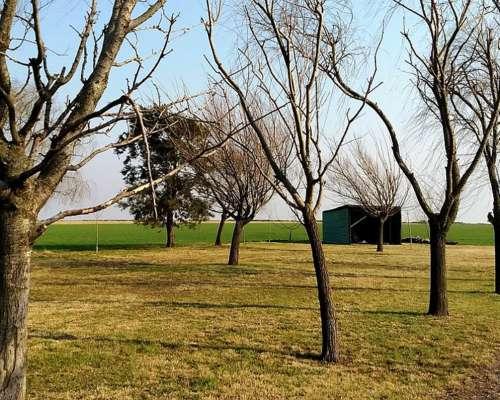 150 Has Agrícolas Bouquet, Dto. Belgrano, Santa FE