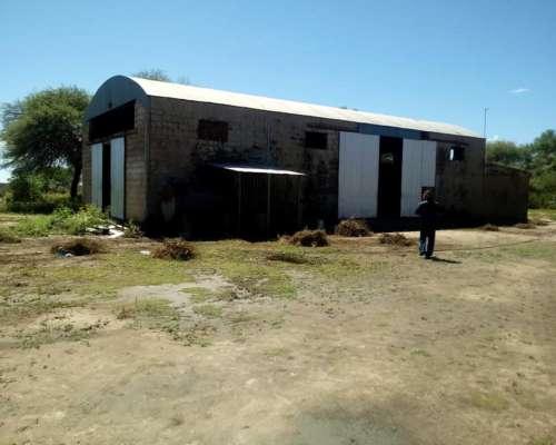 Venta Campo Guanaco Muerto, Cruz del Eje, Cordoba